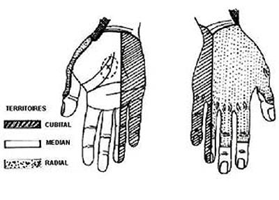 Aidez à guérir atopitchesky la dermatite